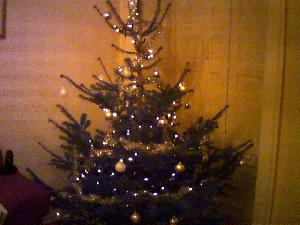 The Girl and I put our festive efforts together and,  after hauling a 7 foot tall tree from Leith Walk on my shoulder, this is the end result.  It totally rocks!